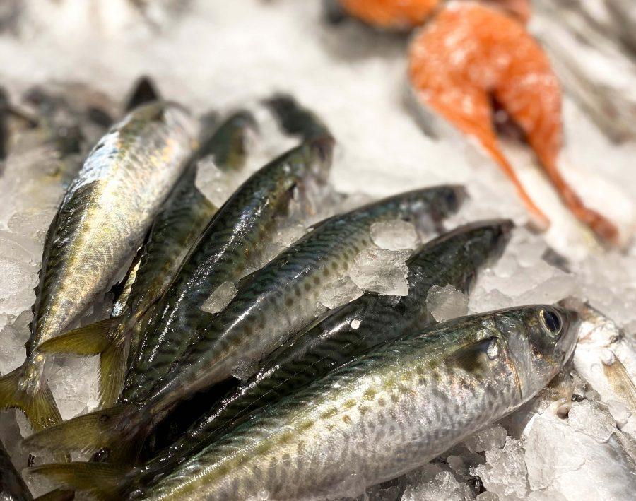 pescado azul - vitamina d