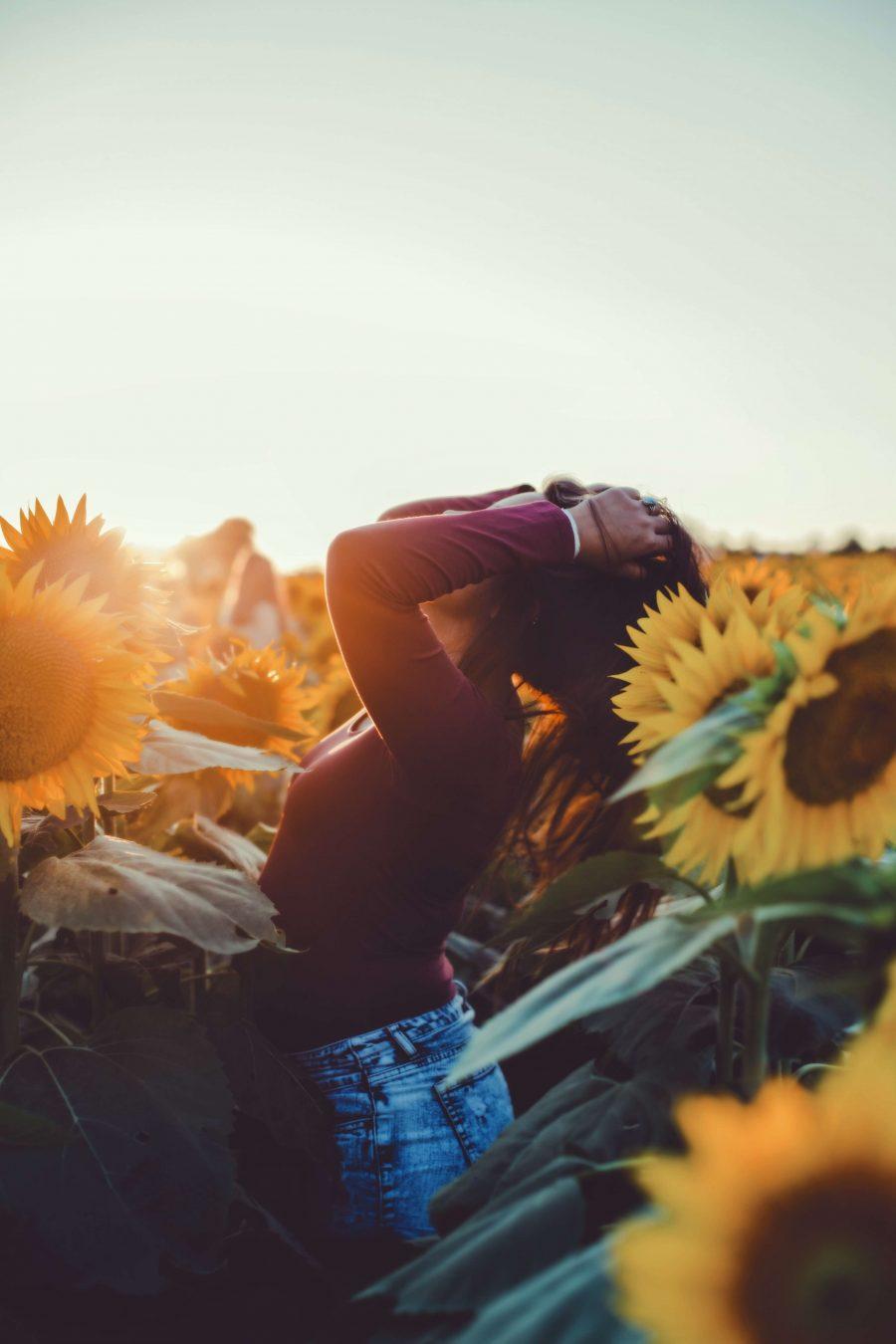 exposición solar-rayos de sol- vitamina d